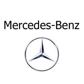 Grille pare-chien sur mesure Mercedes
